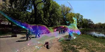 Central park ta görsel şölen