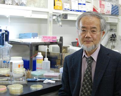 Nobel Tıp Ödülü'nü alan Yoshinori Ohsumi kimdir?