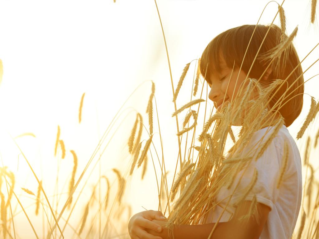 Çocuğunuza bulgur yedirmeniz için 10 önemli sebep