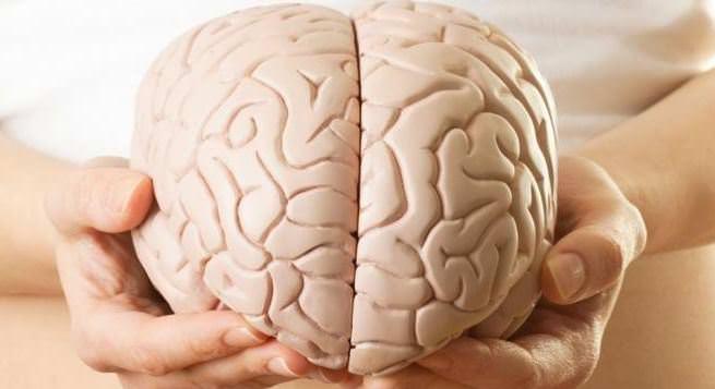 İnsan beyni hakkında şaşırtıcı gerçekler
