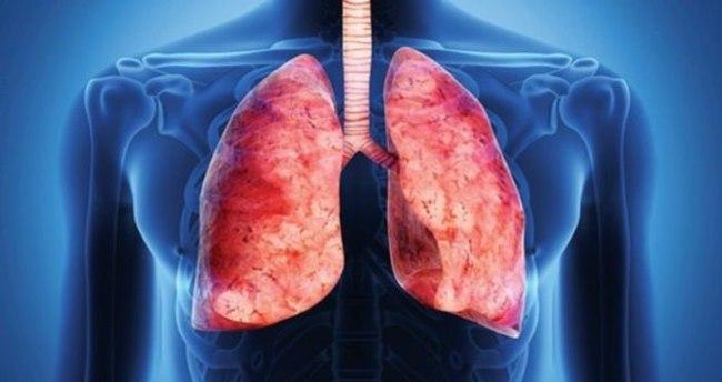 Ciğerlerinizi bunlarla temizleyin