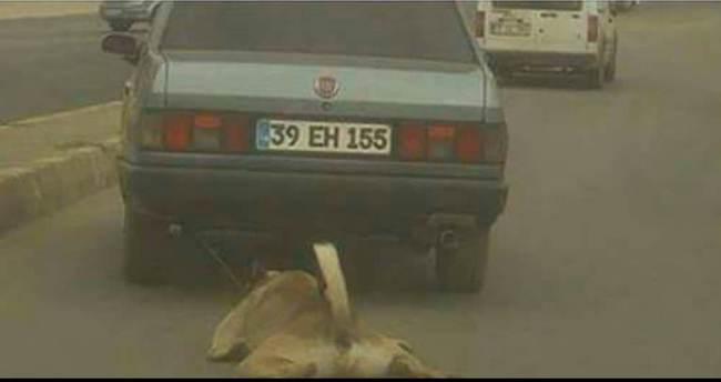 Köpeği aracına bağlayıp sürükleyen sürücü bulundu