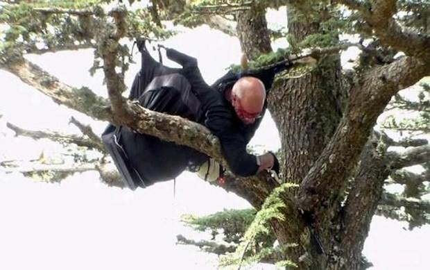 Alman paraşütçü ağaca takıldı!