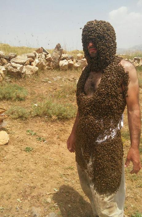 Arılarla Guinness'e girmek istiyor