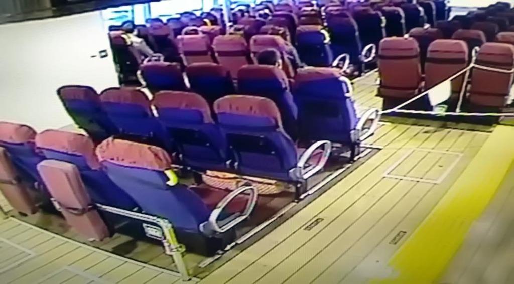 Yavrularını gemide doğurdu