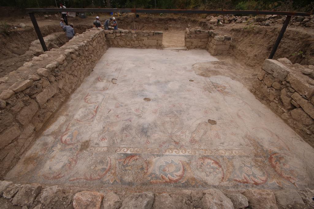 Yonca tarlasında bin 400 yıllık mozaik