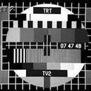 TRT, uydu televizyon yayınını başlattı.