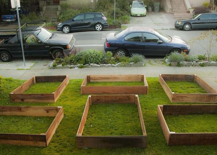 Bahçenin 60 günde inanılmaz değişimi