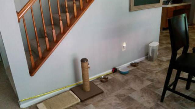 Bakın merdivenin altına ne yaptı