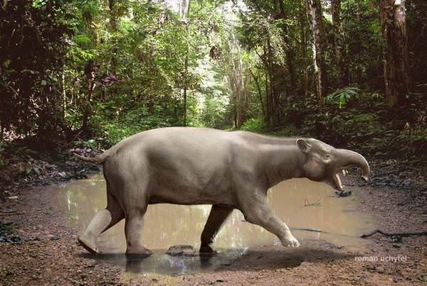 Bir zamanlar yeryüzünde yaşayan hayvanlar