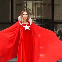 Chicago Türk Festivali başladı!
