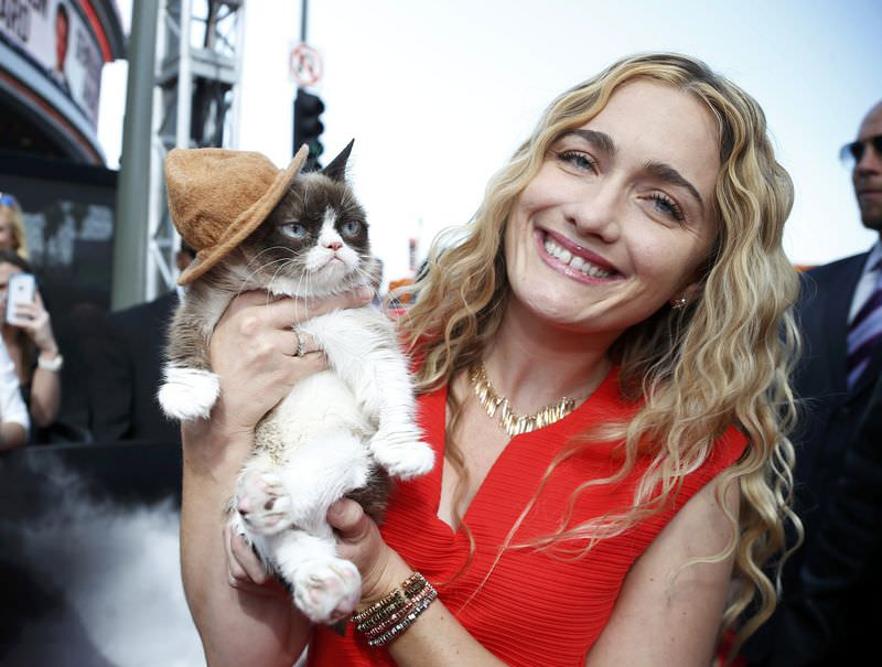 Huysuz Kedi(Grumpy Cat) 64 milyon sterlin kazandı