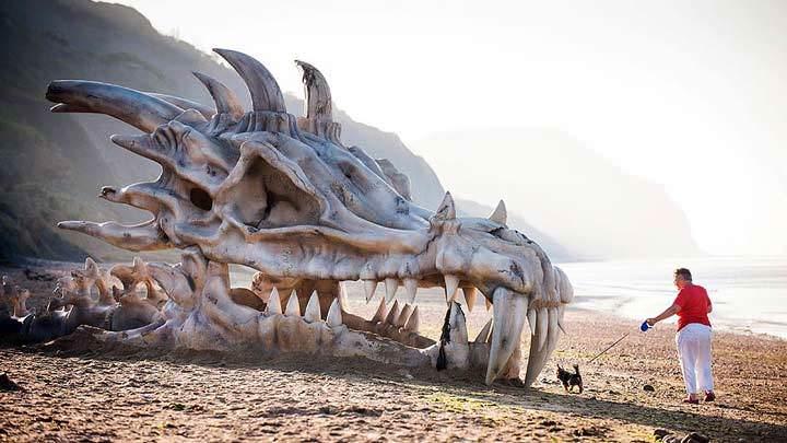 Kumsalda dev ejderha kafatası