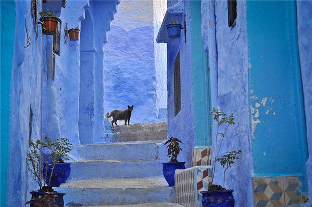 Mavi şehir görenleri hayran bırakıyor