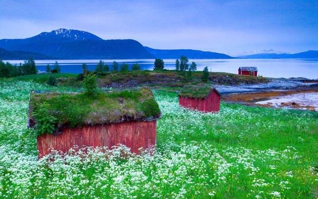 Norveç'te tabiatla iç içe hayalet binalar