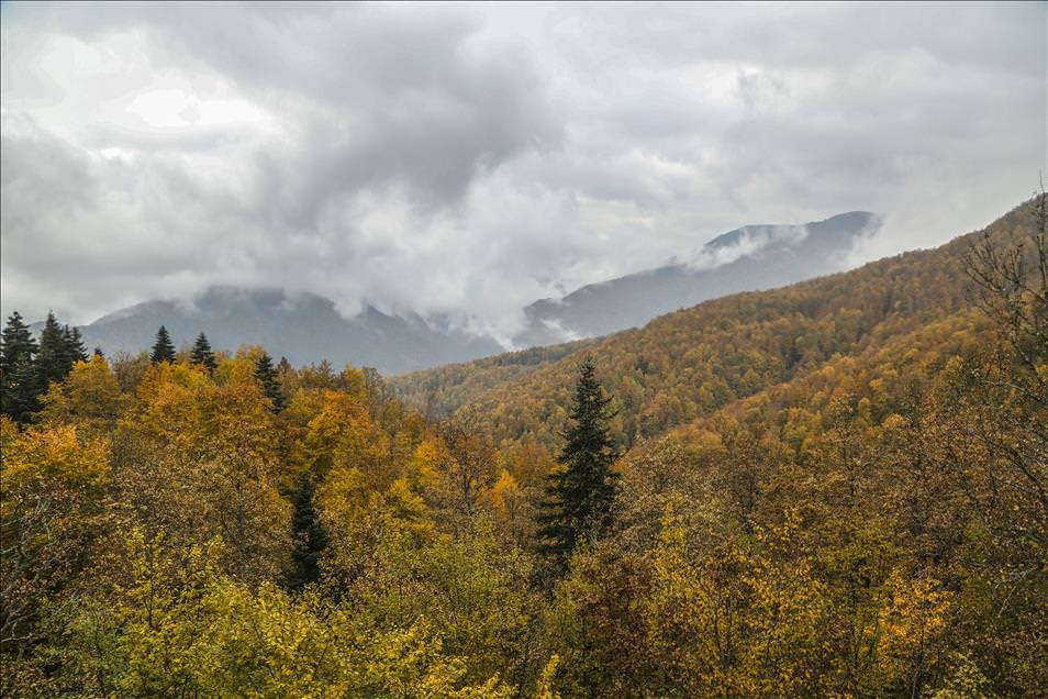 Kastamonu'da sonbaharın renk şöleni