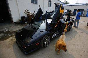 4 sene uğraştı Lamborghini yaptı
