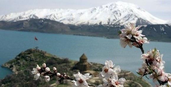 """Akdamar Adası """"çiçek"""" açtı"""