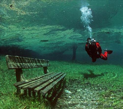 uniquedivingaustria d Kışın park yazın göl!