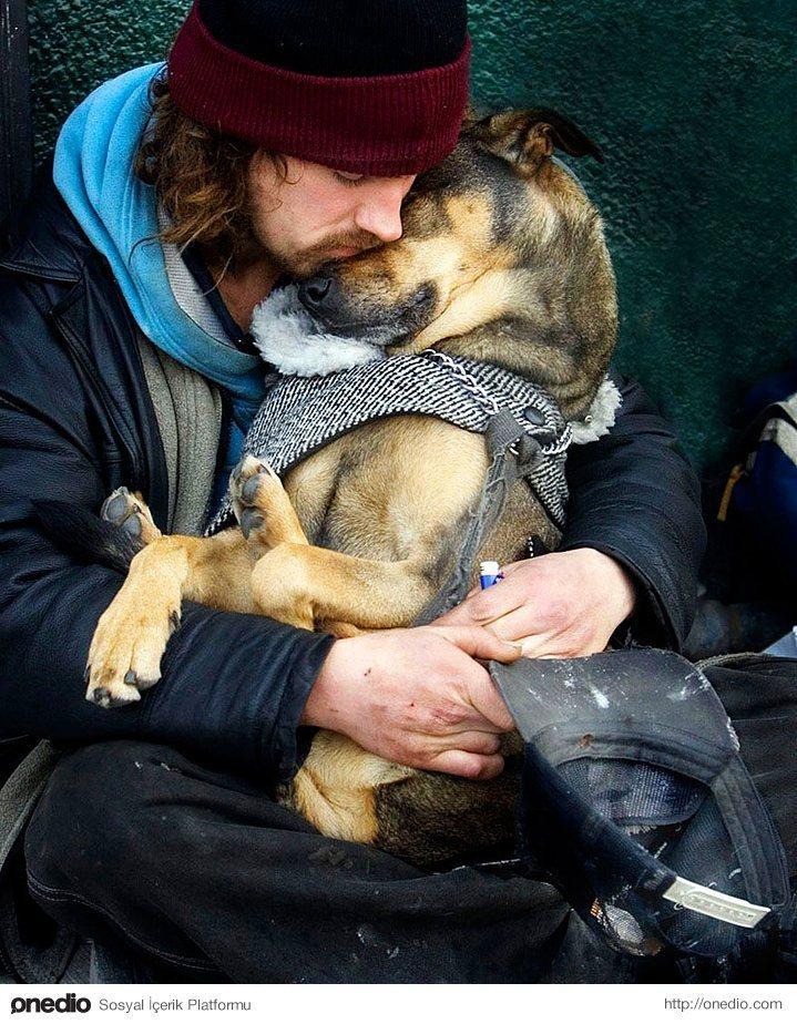 Dostluğun maddiyatla alakası olmadığını gösteren 15 harika köpek