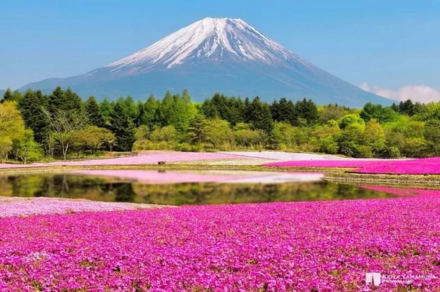 Dünyanın en güzel 20 dağı