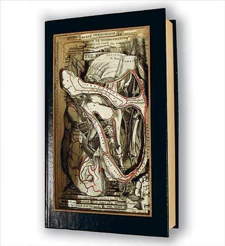 'Kitap Cerrahı' Brian Dettmer
