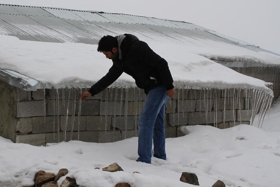 Sibirya soğuklarına halılı önlem