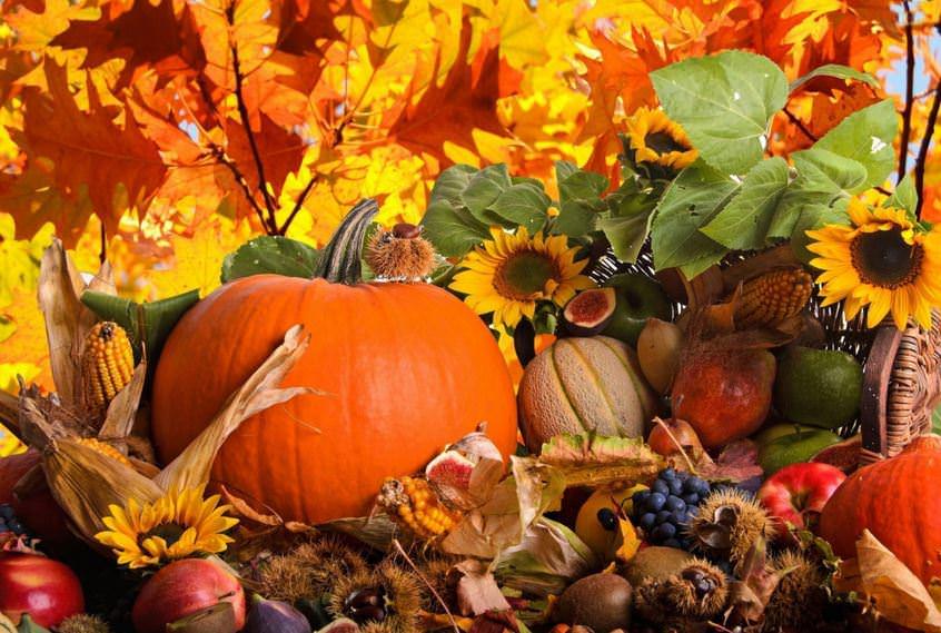 Sonbaharda önleminizi alın, daha az hasta olun!