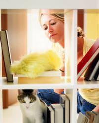 Evcil hayvan olan evde temizlik ayrı özen ister
