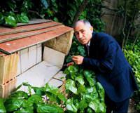 'Karınca' kararınca deprem tahmini