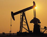 Enerji ve Tabii Kaynaklar Bakan� Taner Y�ld�z BDP Diyarbak�r Milletvekili Altan Tan petrol T�kiye