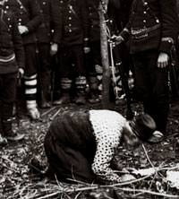 Balkan Sava��'ndan kan donduran kareler