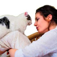 Kedi m�rlamas� en iyi stres ilac�