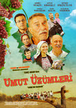 Umut zmleri