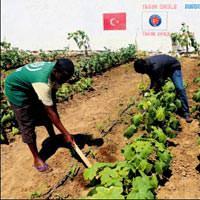 Somali'de T�rk izleri art�yor
