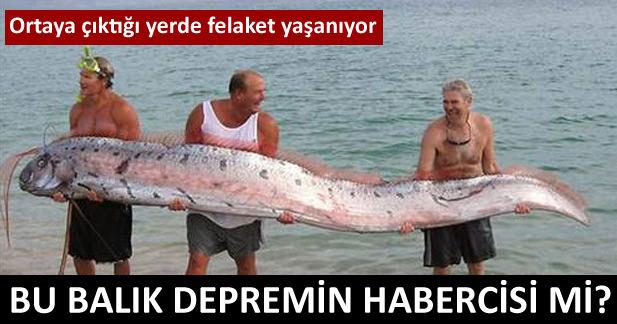 Bu balık depremin habercisi mi?