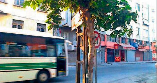 MELİH ABİ: Çevre temizliği ve sinyalizasyon eksikliği