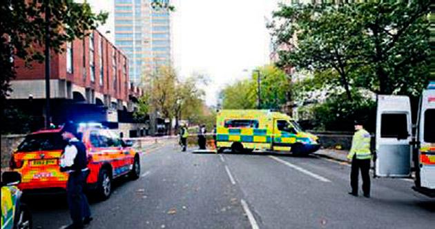 Londra'da ağaç öldürdü