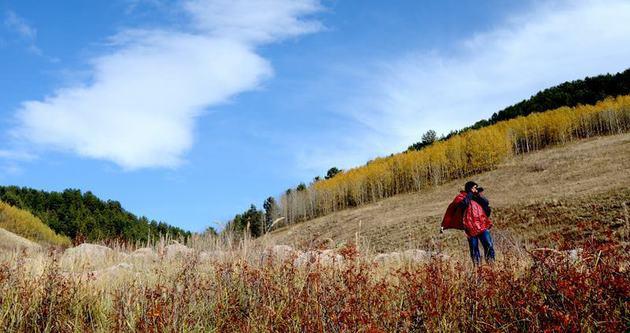 Sarıkamış'ta sonbahar büyülüyor