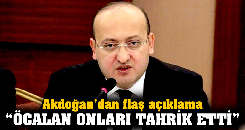 Akdoğan: Öcalan onları tahrik etti!