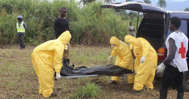 Ebola virisü yaklaşık 5 bin can aldı