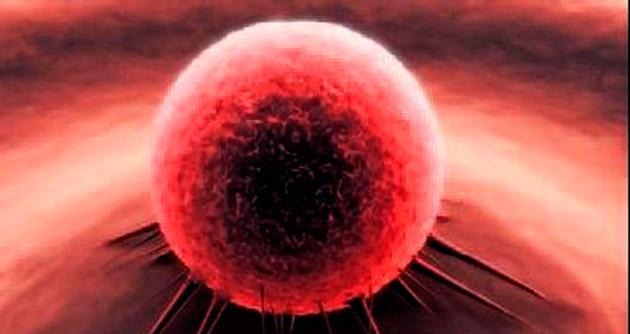 Kanseri öldüren virüs keşfedildi