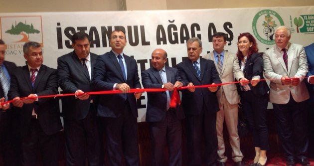 İstanbul'da çalı üretimine başlandı