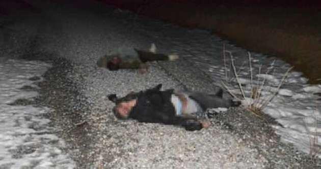 Başkale'de 2 kaçak donarak öldü