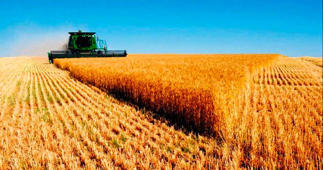 Tarımsal yatırımcıya yüzde 50 hibe desteği