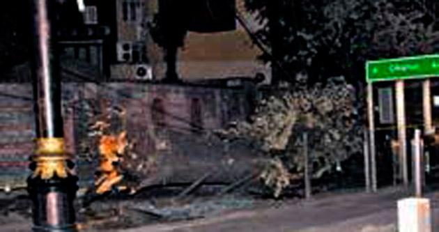Ağaç 3 kişinin üzerine devrildi