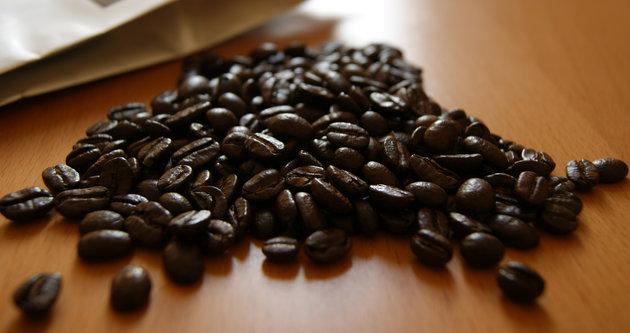 En pahalı kahve Kopi Luwak