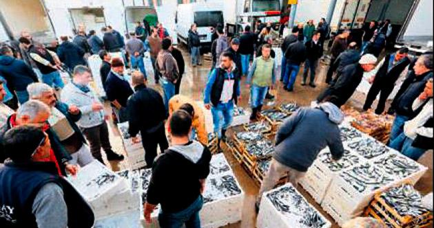 Balığın fiyatı uygun ama tüketimi kısıtlı