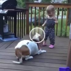 Bebeği güldürmeye çalışan köpek font color=redVİDEO/font