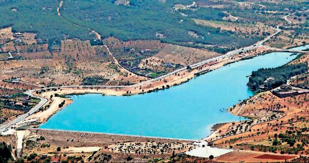 Yapay gölet kuş cenneti